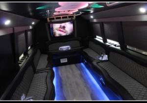 20 Pass Party Bus rental atlanta